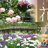 ★修善寺 虹の郷 新着情報